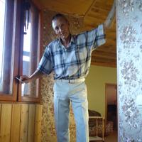 володя, 48 лет, Стрелец, Воронеж