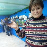 Елена 38 Черноморск