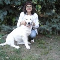 ИРИНА, 68 лет, Скорпион, Самара