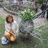 Фаина, 60, г.Ребриха