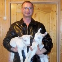 денис, 38 лет, Дева, Ярославль
