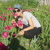 Елена, 35, г.Комсомольск-на-Амуре