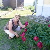 Нина, 64 года, Телец, Череповец