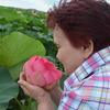 Нина, 61, г.Липецк