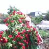 марина, 57, г.Новокуйбышевск