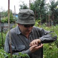aleks, 62 года, Дева, Волгоград