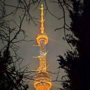 Азиз Азиз 34 Ташкент