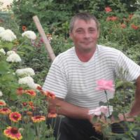 Алексей, 43 года, Овен, Волгодонск