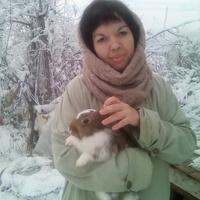 Elmira, 37 лет, Весы, Малгобек