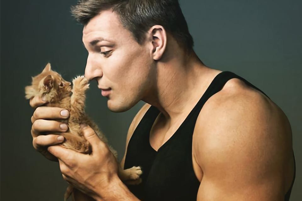 мечтают мужчины и кошки фото только