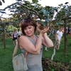 Елена, 46, г.Архангельск