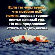 Незнакомка 41 Белгород