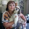 Анфиса, 56, Чугуїв