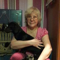 Галина, 67 лет, Скорпион, Могилёв