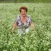 Лидия, 58, г.Калуга