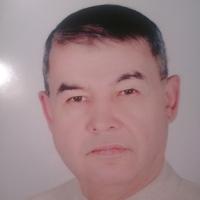 Альберт, 53 года, Телец, Йошкар-Ола