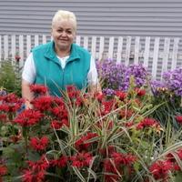 Людмила, 63 года, Козерог, Пермь