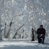 Андрей, 54, г.Махачкала